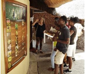 Chimanimani Mountain Guides At Victoria Falls