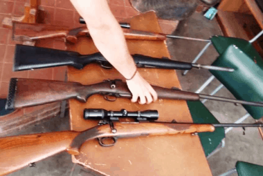 Firearms Collection