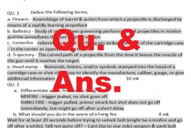 Past Papers With Suggested Answers Thumbnail