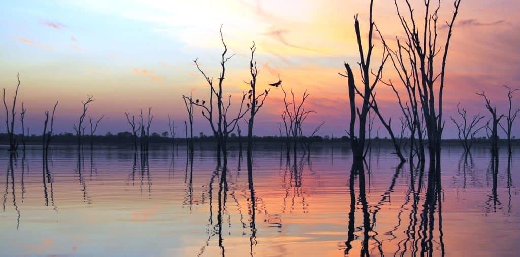 Matusadona, Sunset trees Gebele Nov 2012