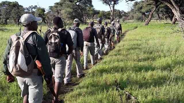 """""""Zimbabwe's [Professional] Guides – Best In The World?"""