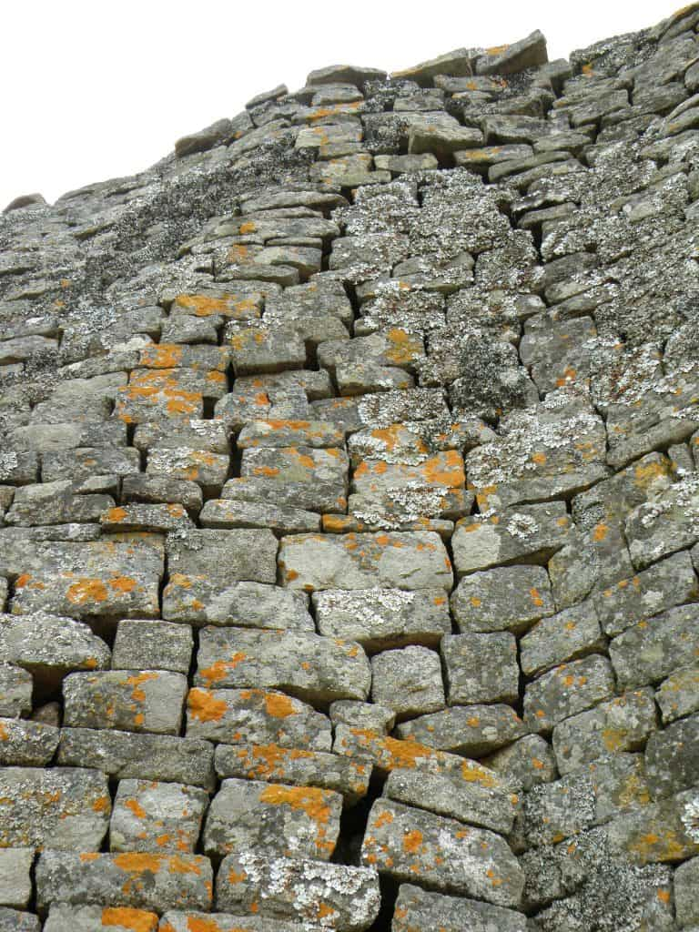 Lichen on the walls of Great Zimbabwe