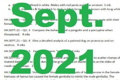 Sept 2021, Exam Paper Thumbnail